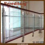 Balusters нержавеющей стали стеклянные/стеклянный Railing для балкона (SJ-S102)