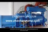2BE4526 Vakuumpumpe für Papierindustrie