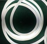Neonflexlicht des LED-Streifen-Künstler-LED
