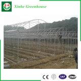 Casa verde de película plástica de jardim vegetal da flor para a venda
