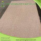 Competitive Price를 가진 최신 Sale 5mm Bintangor Plywood
