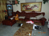 Neues klassisches Qualitäts-Leder-Sofa, Europa-Sofa (A36)