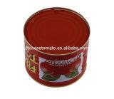 1 Kg, 2,2 Kg, 3 Kg 4.5 Kg de tomate conservada Pega con Tmt Marca, Marca Gino, OEM