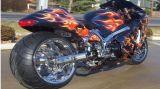 Coda calda del motociclo di vendita/indicatore luminoso posteriore Lm-101 del piatto di /Stop/License con la certificazione di E4 E9