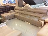 Mobilia domestica, mobilia del salone, sofà di cuoio (SA28)