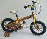 """製造の熱い販売12は"""" /16台の"""" /20台の""""子供のバイクからかうバイク(FP-KDB-17084)を"""