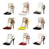 Новые ботинки платья повелительницы Секса высокой пятки конструкции (S17)