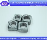 Noix DIN557 carrée galvanisée d'acier du carbone