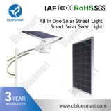 солнечный приведенный в действие свет СИД датчика движения 15With20With30With40With50With60With80W освещая франтовской уличный фонарь с панелью солнечных батарей