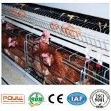 Клетка цыпленка слоя птицефермы техника Poul (горячее гальванизированное поверхностное покрытие)