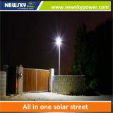 Nuevo 30W modificado para requisitos particulares todo en una luz de calle solar integrada