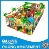 Cour de jeu d'intérieur en plastique avec TUV-SGS (QL-3059D)