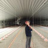 Casa prefabricada de la granja avícola con el equipo de las aves de corral