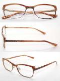 Het populaire In het groot Metaal Eyewear Optische Glasses Frame B. 1096 van de Acetaat van de Voorraad