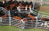 최신! ! ! 직류 전기를 통한 Livestock Horse Panel 또는 Sheep Panel/Cattle Panels