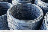 熱い販売によって電流を通されるステンレス鋼ワイヤー