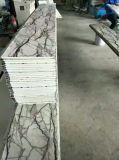 Prefabricated 건물을%s 엄밀한 폴리우레탄 거품 격리된 위원회