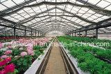Venlo Multi-Überspannung PC Gewächshaus für Bauernhof