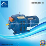 セリウムとのYCT Series Three-Phase Induction Motor