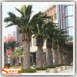 Palmeira plástica falsificada artificial da tâmara da decoração ao ar livre