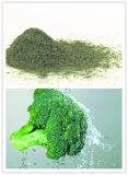 Выдержка брокколи содержа богатую аскорбиновую кислоту