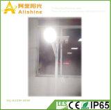 5 anos de fabricante solar 20W-80W da luz de rua do diodo emissor de luz da garantia IP65 Semi-Separaram