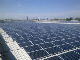 Prix de fournisseur de piles solaires du panneau solaire 300W de promotion le meilleur poly tout le panneau solaire noir de 12V 300W 310W 320W avec le collant d'OEM