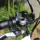 새로운 뚱뚱한 타이어 바닷가 함 전기 자전거 (Rseb-505)