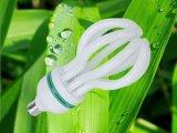 105W le lotus 3000h/6000h/8000h 2700k-7500k E27/B22 220-240V CFL évaluent vers le bas