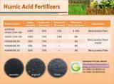 Potassio Humate del fertilizzante organico