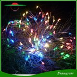Decotação de árvores de Natal Paisagem Inserir 100LED fio de cobre fio de luz solar com branco / quente branco / luz de LED colorido