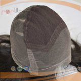 Peruca cheia amarrada mão do laço Braizlian do laço do cabelo humano do cabelo preto de Fornt