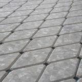Azulejo de mosaico de agua dulce del Rhombus del shell y del olmo