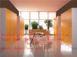 Armario ambiental modificado para requisitos particulares venta caliente europea de seis puertas