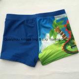 Swimwear de Swimshorts do menino