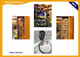 Lavadora automática del coche del túnel de Dericen Ds5 con 5 cepillos