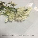 0,2 mm Clear Ultra-Thin Soda-Lime Glass pour verre optique / couverture de téléphone portable / écran de protection