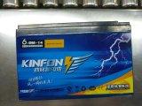 batterie profonde de gel de cycle de longue vie de 6-Dm-14 (12V14AH) Kinfon