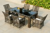 Muebles al aire libre superventas de la rota (SC-B8960)