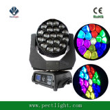 LED 19*15W RGBW 4in1 Biene-Augen, die Hauptlicht verschieben