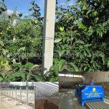 Macchina concreta della colonna che fa i tralicci concreti dell'uva