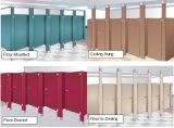 Partition de toilette de résine phénolique de démontage avec le matériel d'acier inoxydable pour le centre commercial