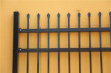 Ограждать Coated высокия уровня безопасности черного порошка декоративный сваренный орнаментальный стальной