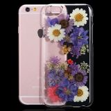 Transparent Floral Pressed Protective Back Cover pour iPhone 7