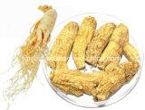 Выдержка Ginsenoside 2%~80% женьшень Panax продукта здоровья