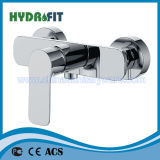 Bon robinet de baignoire en laiton (NEW-FVB-2668C-21)