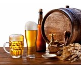 Micro strumentazione della birra della strumentazione di preparazione della birra di Kingsunshine 30L/8gal