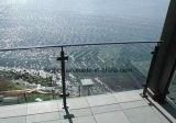 Roestvrij staal D Shap om de Klem van het Glas voor het Traliewerk van het Glas