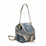 호화로운 모조 다이아몬드 술 숙녀 어깨에 매는 가방 (MBNO040042)