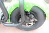 elektrisches Motorrad des grossen Rad-18inch mit 1000W 60V/20ah